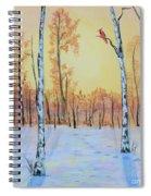 Winter Birches-cardinal Right Spiral Notebook
