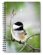 Winter Black Capped Chickadee Spiral Notebook