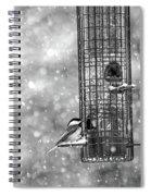 Winter Blessing Chickadee Spiral Notebook