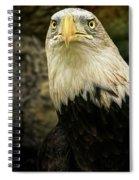 Winter Eagle Spiral Notebook