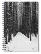 Winter Forest In Black And White Spiral Notebook