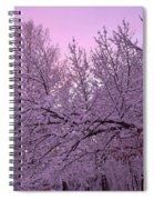 Winter In New England Spiral Notebook