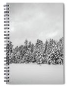 Winter Storm Anderson Pond Spiral Notebook