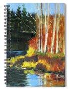 Winter Sunshine Landscape Spiral Notebook