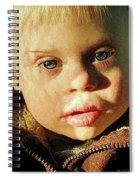 Winter's Glow Spiral Notebook