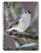 Wintry Virginia Titmouse Spiral Notebook
