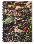 Witch's Hat Mushrooms Spiral Notebook