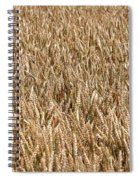 Wonderful Wheat Spiral Notebook