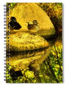 Wood Duck Pair And Their Reflection Spiral Notebook