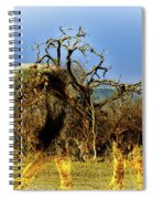 Wrapped Lion Spiral Notebook