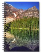 Yearnings Spiral Notebook