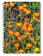 Yellow Poppies Of California Spiral Notebook