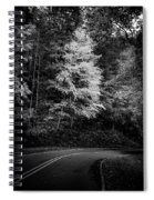 Yellow Tree In The Curve In Black And White Spiral Notebook