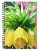 Yellow Tulip Close Up Spiral Notebook