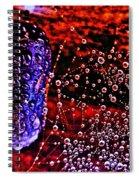 You Gotta Be Kidding Me  Spiral Notebook