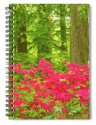 You Raise Me Up Spiral Notebook