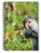 Your Friendly Neighborhood Squirrel Spiral Notebook