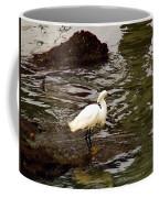 Breeding Plumage Coffee Mug