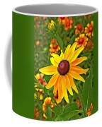Coneflower And Gaillardia Coffee Mug