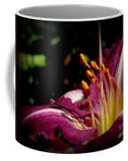 Day Lillies Coffee Mug
