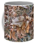 Dead Leaves Coffee Mug