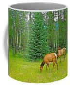 Elk Near Wapiti Campground In Jasper Np-alberta Coffee Mug