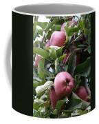 Eve's First Choise Coffee Mug