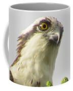 Eye Of The Osprey Coffee Mug