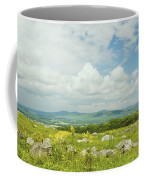 Large Blueberry Field With Mountains And Blue Sky In Maine Coffee Mug by Keith Webber Jr