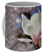 Magnolia Flowers In Spring Time Coffee Mug