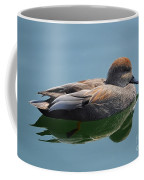Male Gadwall Duck  Coffee Mug