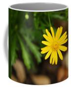 Marguerite Yellow Daisy Coffee Mug