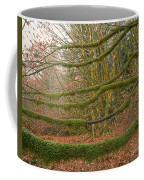 Moss-covered Big Leaf Maple Branches Coffee Mug