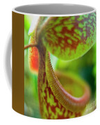 Pitcher Plants 2 Coffee Mug