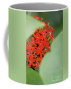 Red Butterfly Buds By Jammer Coffee Mug