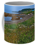 Rocky Harbour In Gros Morne Np-nl Coffee Mug