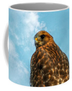 What Are You Looking At Red Shoulder Hawk Coffee Mug