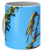 Yellow-rumped Warbler Coffee Mug