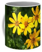 Yellow Texas Wildflowers Coffee Mug