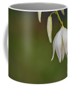 Yucca Blossom Coffee Mug