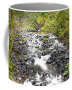 0106 Columbia River Gorge Near Bridal Veil Falls Coffee Mug