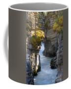 0191 Athabasca Canyon 2 Coffee Mug