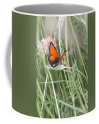 02 Balkan Copper Butterfly Coffee Mug