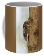 02 New Forest Cicada  Coffee Mug