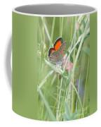 03 Balkan Copper Butterfly Coffee Mug