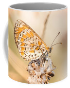 03 Lesser Spotted Fritillary Coffee Mug