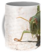 04 Egyptian Locust Grasshopper Coffee Mug