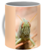 06 Egyptian Locust Grasshopper Coffee Mug