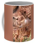 0681 Palatki Ruins Coffee Mug