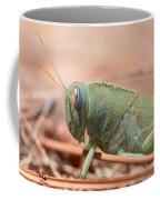 08 Egyptian Locust Grasshopper Coffee Mug